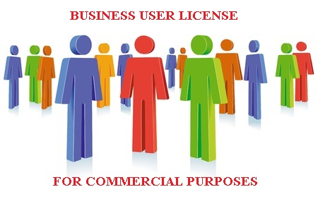 Business User License